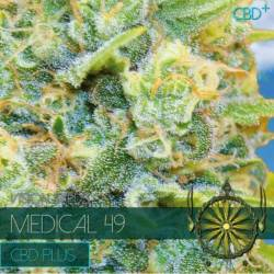 Medical 49 CBD+ Feminizada