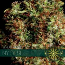 NY Diesel Feminizada