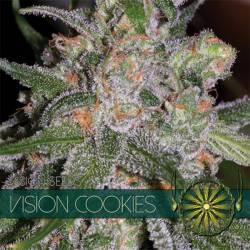 Vision Cookies Feminizada