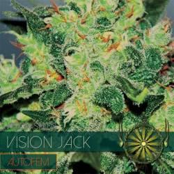 Vision Jack Autofloreciente...