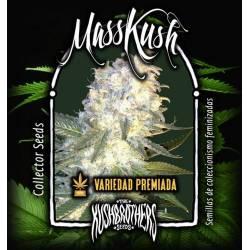Mass Kush Feminizada