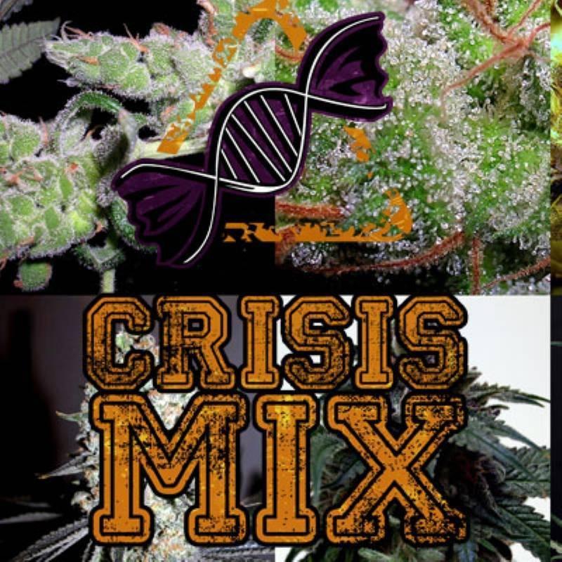 Crisis Mix Feminizada - 1 ud fem