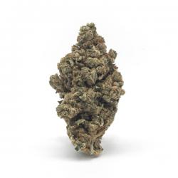 Flor CBD Amnesia - Matillaplant
