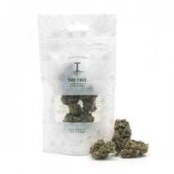 Orange Cookies CBD Cogollo marihuana legal - Matillaplant