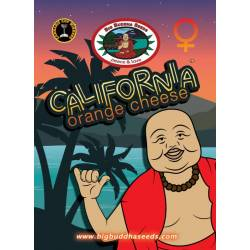 California Orange Cheese...