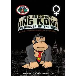 KING KONG - Imagen 1