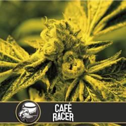 CAFE RACER - Imagen 1