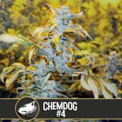 CHEMDOG # 4 - Imagen 1
