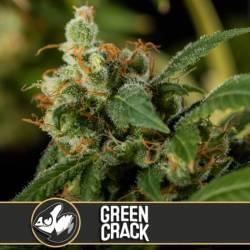 GREEN CRACK - Imagen 1