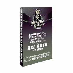 DEALER DEAL XXL AUTOMIX - Imagen 1