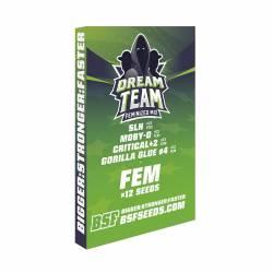 DREAM TEAM FEMINIZED MIX - Imagen 1