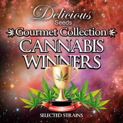Cannabis Winners # 1...