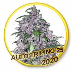 Auto Tripin 25 (Usa Strains)