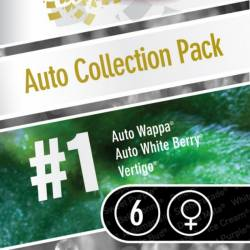 AUTO COLLECTION PACK #1 - Imagen 1
