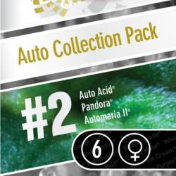 AUTO COLLECTION PACK #2 - Imagen 1