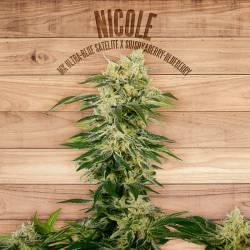 NICOLE - Imagen 1