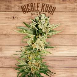 NICOLE KUSH - Imagen 1