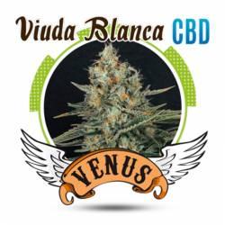 VIUDA BLANCA CBD Feminizada - Imagen 1
