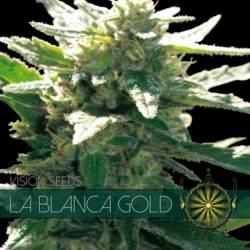 LA BLANCA GOLD Feminizada (ETIQUETA FRANCESA) - Imagen 1
