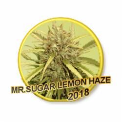 MR. SUGAR LEMON HAZE - Imagen 1