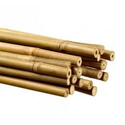 Tutor De Bambú 1m