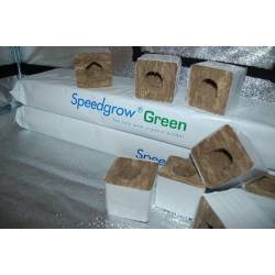 Slab Rfx#1 1000x150x75mm Speedgrow Green