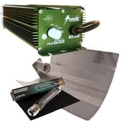 Kit 600 W Bolt + Reflector Stuco + Sylvania 600 W Grolux