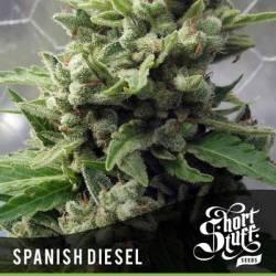 Spanish Diesel...