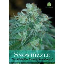 Snowdizzle Regular