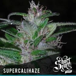 Super Cali Haze...