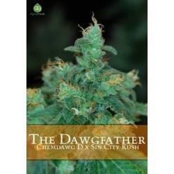The Dawgfather Regular