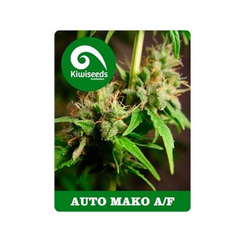 Mako Autofloreciente Feminizada - 5 uds auto-fem