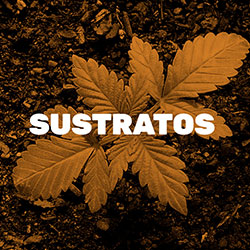 Sale of Substrates for Marijuana