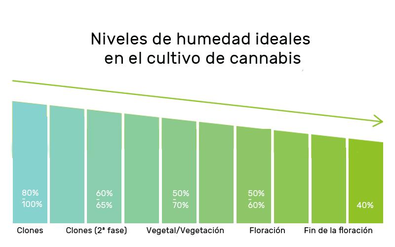 niveles-humedad-cultivo-cannabis
