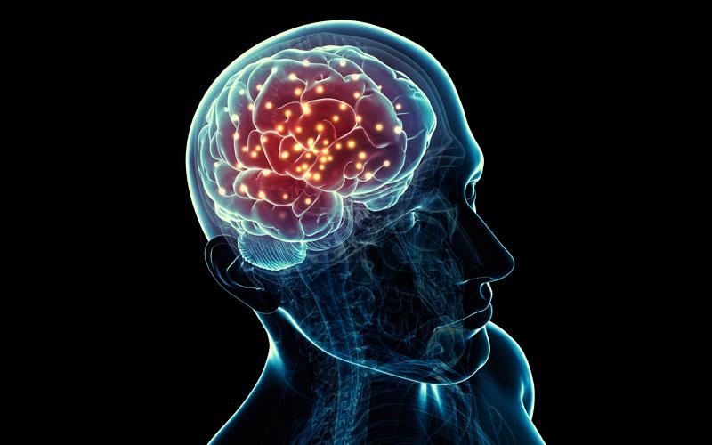 brain-cineole-effects