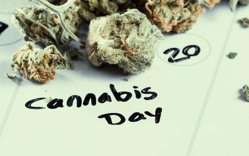 best-time-to-plant-marijuana
