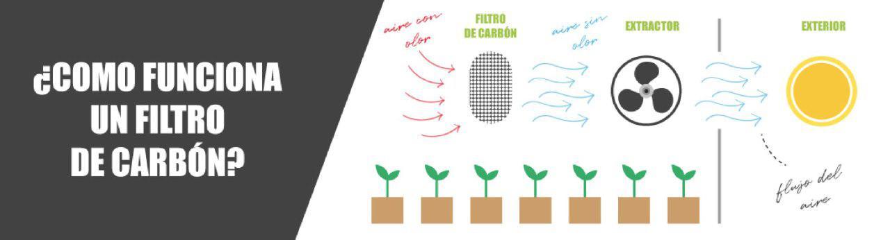 como funciona filtro carbono