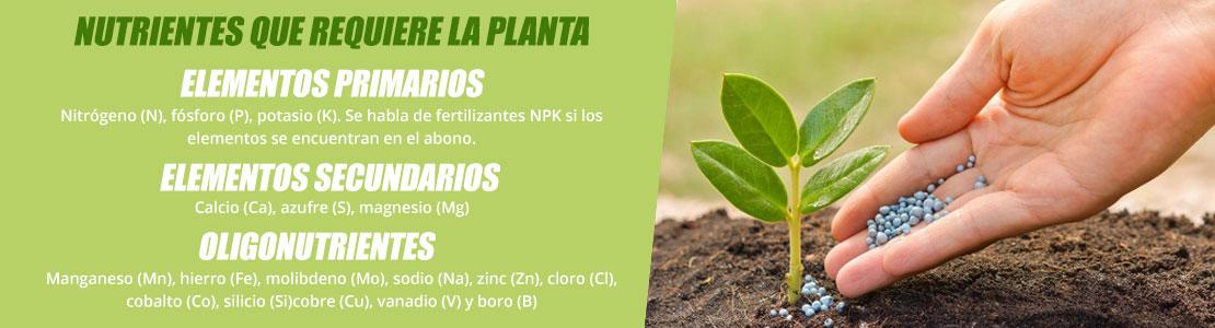 Tipos de nutrientes para marihuana
