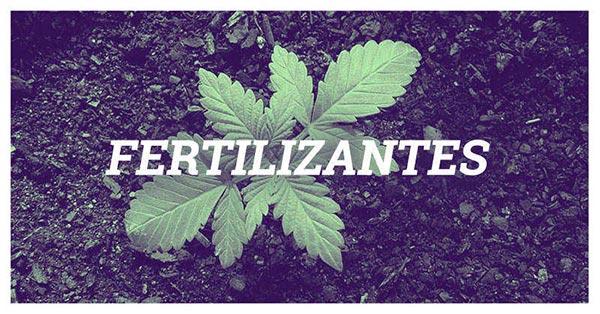 Fertilizantes o abonos para cultivo de marihuana