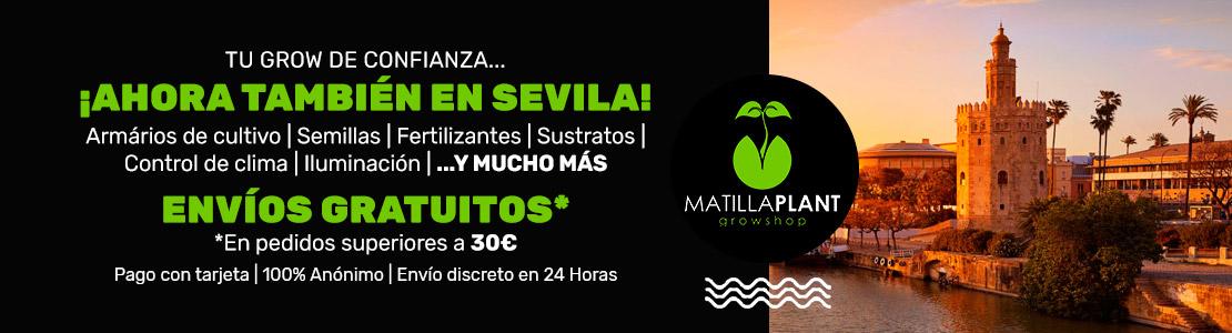 Grow shop en Sevilla.