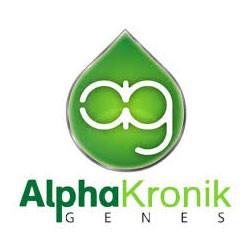 Alphakronik seeds